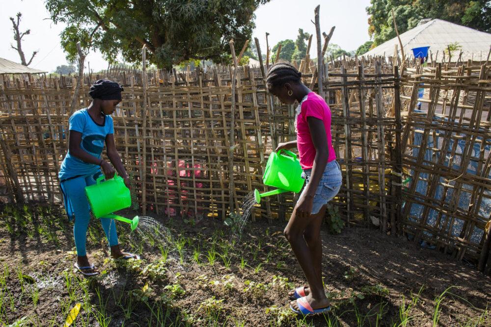 Iama Balde und Djenabu Balde (rosa) wässern Zwiebelpflanzen, die die Schüler:innen in der Grundschule in dem kleinen Dorf Sintchan-Farba, Guinea-Bissau, die sie unterstützt von UNICEF gepflanzt haben.