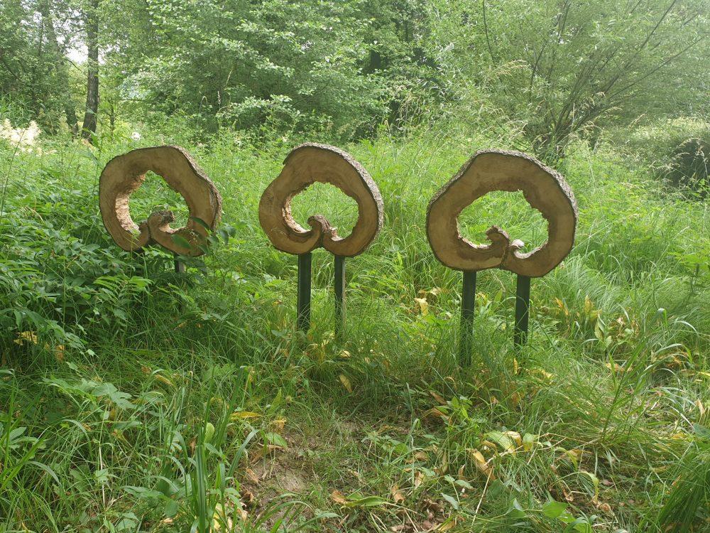 Geformte Löcher in Baumscheiben