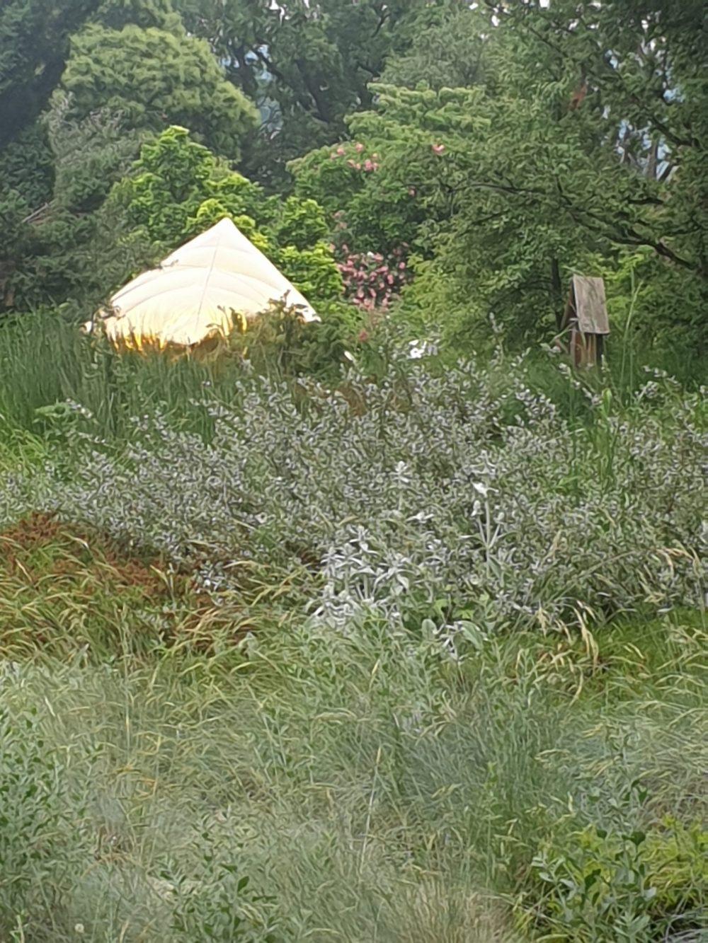 Eines der Luftobjekte zwischen Bäumen udn Sträuchern im Botanischen Garten Linz