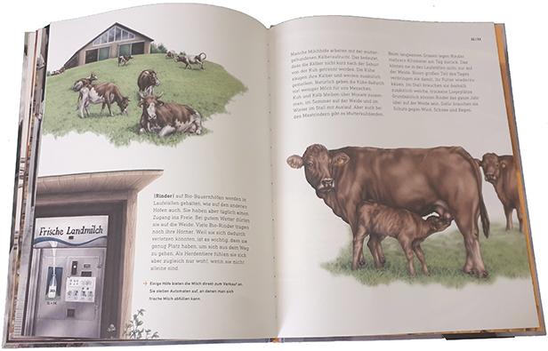 """Doppelseite aus """"Das wahre Leben der Bauernhoftiere"""""""