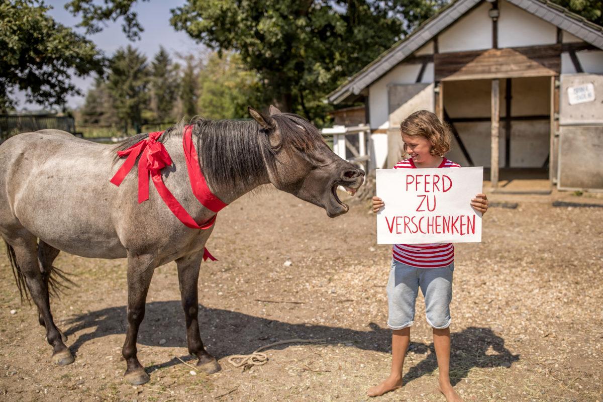 """Paul mit einem Schild """"Pferd zu verschenken"""" Foto: Tomas Rodriguez"""