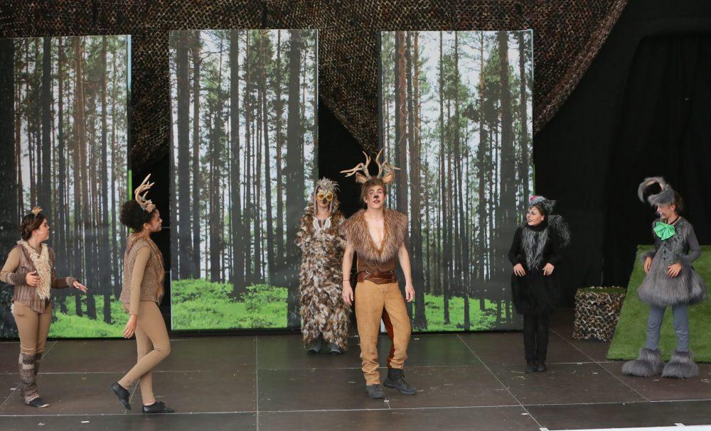 Fast alle Tiere des Waldes auf der Bühne