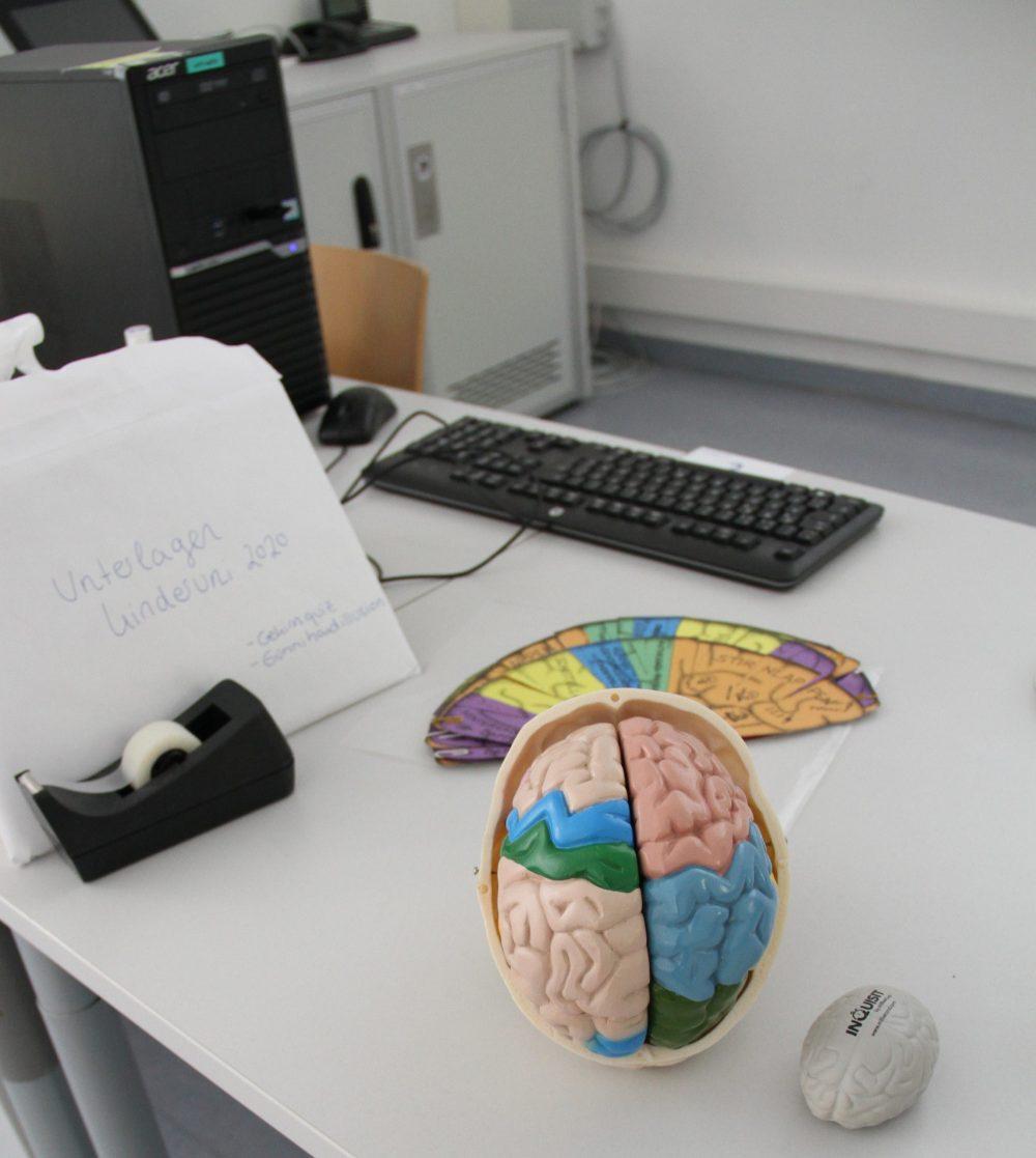 Kunststoff-Gehirn