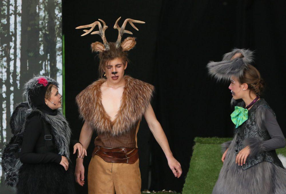 Einige der Tierkinder des Waldes