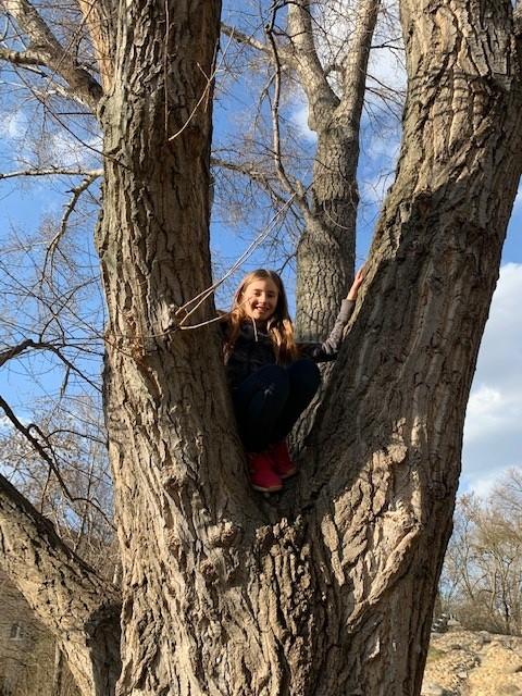 Mädchen in einer Astgabel eines Baumes