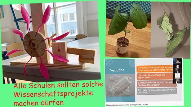 Bildmontage aus drei Fotos aus Pflanzen, Wasserkraftmodell